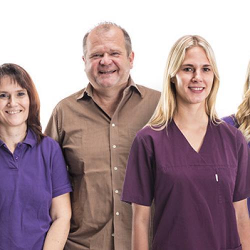 Mitarbeiter einer Zahnarztpraxis als Teamfoto-Zusammenstellung